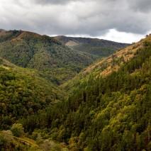 Parque Natural Saja Besaya