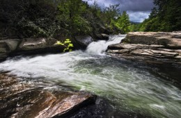 Río Madre / Hoces del Besaya